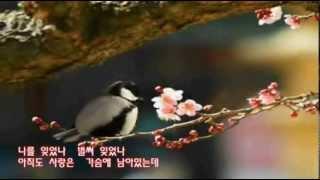 getlinkyoutube.com-정의송 못잊을사랑