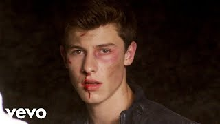 getlinkyoutube.com-Shawn Mendes - Stitches (Official Video)