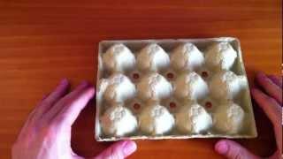 getlinkyoutube.com-Manualidades: hacer manualidades con cartón de huevos - manualidades con material reciclado