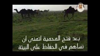 getlinkyoutube.com-أجمل الفياض التي تنبت الفقع في محمية الأمير سلطان بالإحداثيات - سبب شهرة أمّ رضَمَة