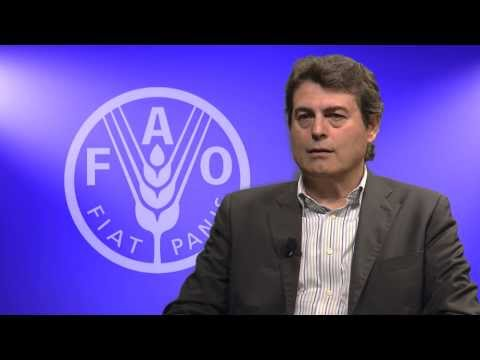 Food and Agriculture Organization of the United Nations: The State of Food Insecurity in the World