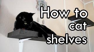 getlinkyoutube.com-How to Make Cat Shelves : DIY
