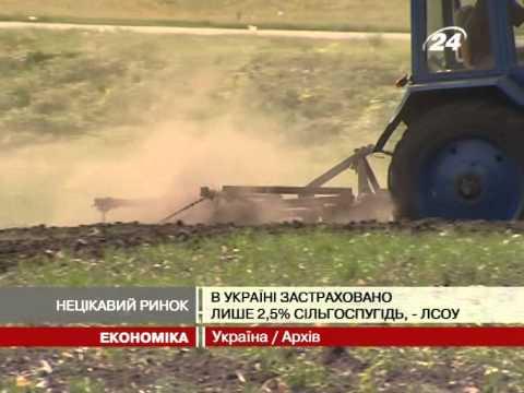 В Україні застраховано лише 2,5% сільгоспугідь - 24 канал