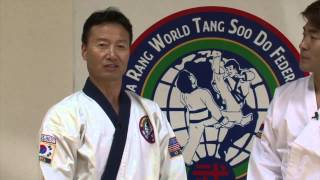 getlinkyoutube.com-Tang Soo Do (1)