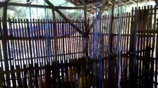 getlinkyoutube.com-Kandang ayam jawa super bagi pemula ternak