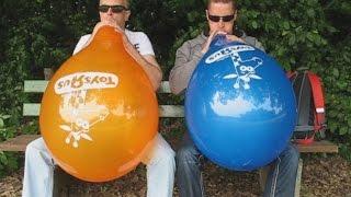 "getlinkyoutube.com-balloon contest - blow to pop race - B2P - Qualatex 16"" –  ToysRUs"