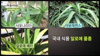 getlinkyoutube.com-[교양]신대동여지도_80회
