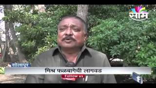 getlinkyoutube.com-Ashok Kalyani's zero budget natural farming fruit garden success story