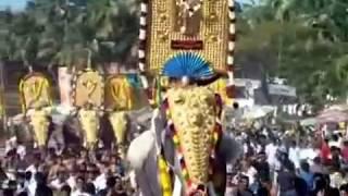 getlinkyoutube.com-Parkkadi pooram / star elephants / pandimelam / mangalamkunnu ganapathi, karnan /sivasunder/