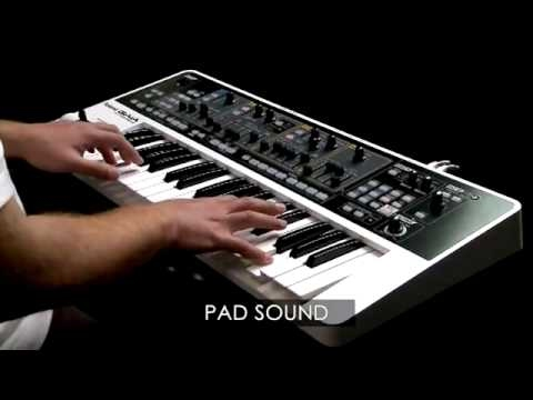 Roland GAIA SH01 Synth (1/1)