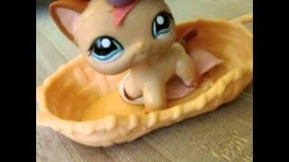 getlinkyoutube.com-Littlest Pet Shop: Magic (Ep#1: Ivy's Surprise)