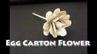 getlinkyoutube.com-Egg Carton Flower - DIY