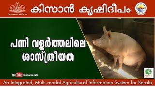 getlinkyoutube.com-Scientific Piggery  rearing : Success story of Franklin, Trivandrum