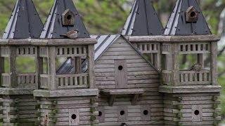 getlinkyoutube.com-Extreme Birdhouses - Belgrave | Business Profile | HuronCountyTV