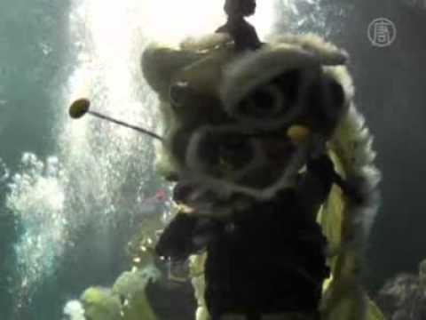 Legenda Barongsai dan Barong Bali di SeaWorld Indonesia