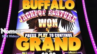 Buffalo Grand Slot Machine - New Game - Nice Bonus Win