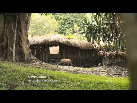 Festival Lembah Baliem di Wamena Papua - NET17