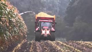 VolkerBV   Claas jaguar 870   De Lutte   Mais Hakselen   2015   Harvesting   NL