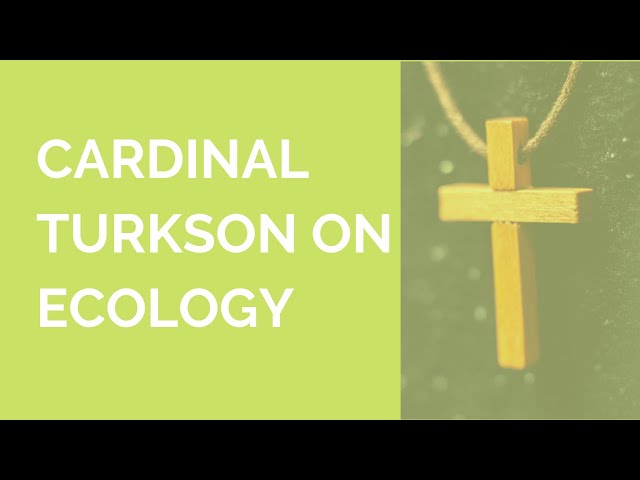 His Eminence Cardinal Turkson speaks on ecology
