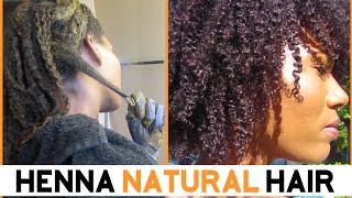 getlinkyoutube.com-Henna On Natural Hair -KashTV