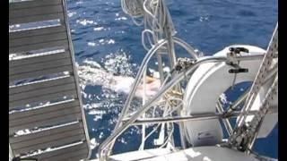 Voltolina collega a nuoto Italia-Albania