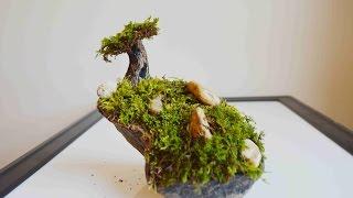 getlinkyoutube.com-How To Make A Moss Tree & Garden With Polymer Clay