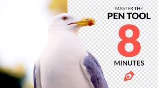 Master the Pen Tool in Under 8 Minutes (Photoshop)