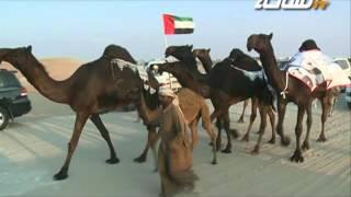 getlinkyoutube.com-مسيرة منقية عبدالهادي بن حمد الجرود المري