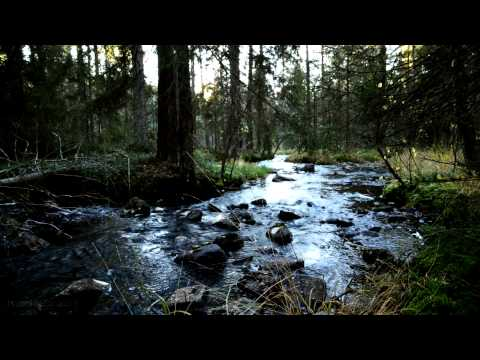 Relaxing Nature Music Peace Tranquility Good Sleep - Suoni della Natura