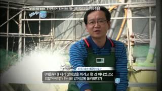 getlinkyoutube.com-[남희석의 52+] 육지 or 바다
