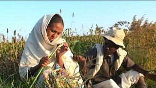 Beraki Gebremedhin - Qedawitey | ????? - New Eritrean Music 2015