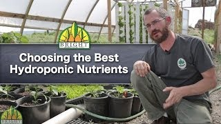 getlinkyoutube.com-The Best Hydroponic Nutrients For Your System