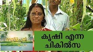 getlinkyoutube.com-Terrace farming - Manorama News Nattupacha