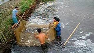 getlinkyoutube.com-palaisdaan - Infanta, Quezon, Philippines