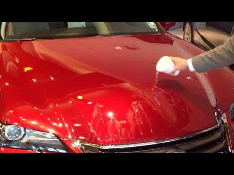 Lexus GS - Vehicle Protection Film