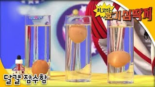 getlinkyoutube.com-Why - 최고다! 호기심딱지 - 달걀 잠수함