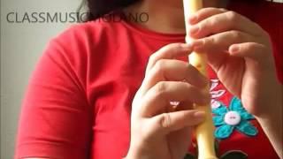 FELIZ CUMPLEAÑOS para flauta dulce