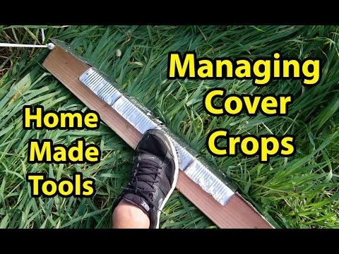 Build Home Made Tools for Managing Cover Crops In Back to Eden Gardening Method 101 with Wood Chips