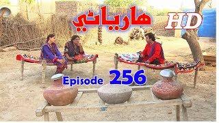 Hareyani Ep 256  Sindh TV Soap Serial    5 7 2018   HD1080p  SindhTVHD Drama