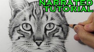getlinkyoutube.com-How to Draw a Cat [Narrated Step-by-Step Tutorial]