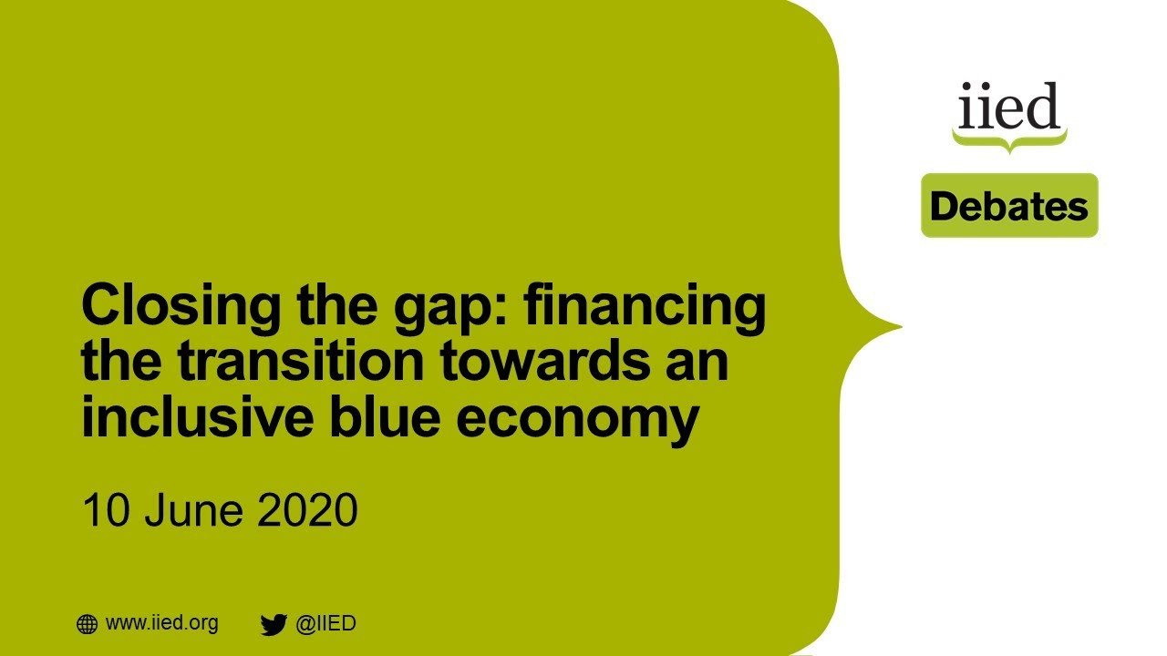 Closing the gap: financing the transition towards an inclusive blue economy