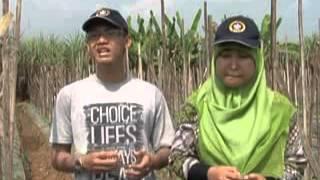 IGTF 2012  - IPB Ajak Petani Pekalongan untuk Sinau Bareng