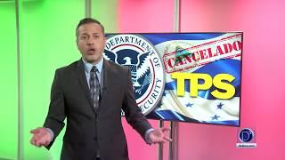 Informe sobre el futuro de los haitianos con TPS que trabajan en el Suroeste de Florida