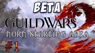 getlinkyoutube.com-Yogscast - Guild Wars 2: Norn Part 1 - Character Creation and Starting Cutscene