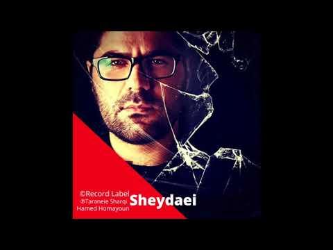 Hamed Homayoun -Sheydaei