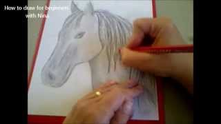 Cómo dibujar un caballo. Como hacer un dibujo para principiantes. Como desenhar um cavalo