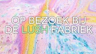 getlinkyoutube.com-Op bezoek bij de Lush fabriek! | Beautygloss
