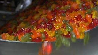 getlinkyoutube.com-오리온 젤리밥 만드는 과정 (젤리공장)