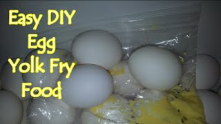 getlinkyoutube.com-Easy DIY Egg Yolk Fry Food