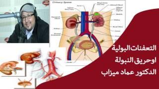 التعفنات البولية او حريق النبولة ✔ الدكتور عماد ميزاب